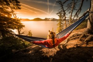 Covacure Camping Hammock Review
